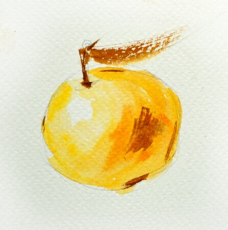 yellow apple: Watercolor illustration of bright yellow apple. Stock Photo