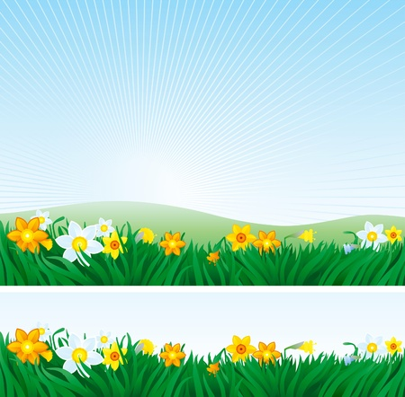 Easter background and banner of spring landscape with yellow and white daffodils.