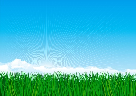 Green grass. Vector background of spring landscape of green grass on blue sky with sunbeames and clouds. Stock Vector - 10487158
