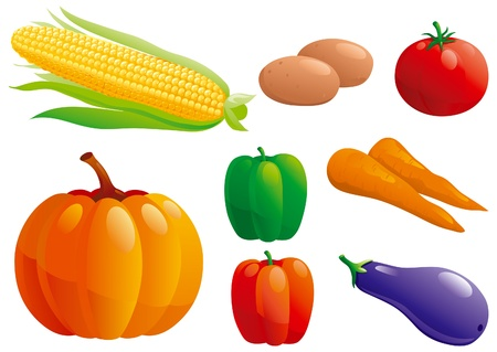 pumpkin tomato: Set of vegetables - pumpkin, pepper, potatoes,   carrot, corn, tomato, eggplant
