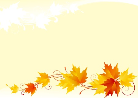 fall leaves: Vector maple background Illustration