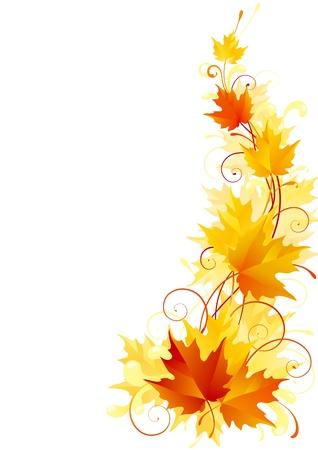 feuillage: Vecteur de fond orn� de rouge, �rable � feuilles jaunes et oranges Illustration