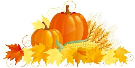 Autumn Harvest. Vector Gruppe von Gemüse isoliert auf weißem Hintergrund. Standard-Bild - 11082942