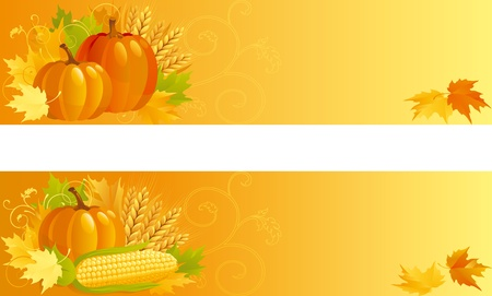 pumpkin seeds: Autumn Harvest. Vector banners of vegetables and leaves  on yellow background.