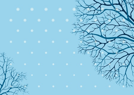 Winter trees. winter background with many tree branches.  Vector