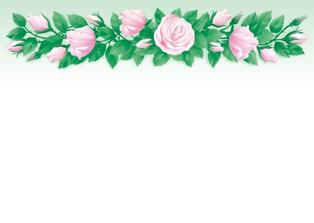 flower border pink: Roses background. Border of  many pink roses and green leaves on abstract background.