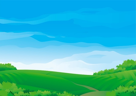 campagna: Sfondo orizzontale con prati estivi Durante il bel tempo soleggiato Vettoriali