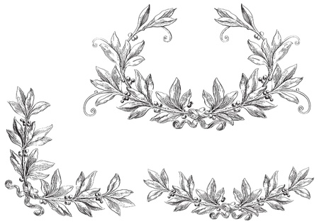 medieval banner: Vector Scroll Set  Decorative elements at engraving style
