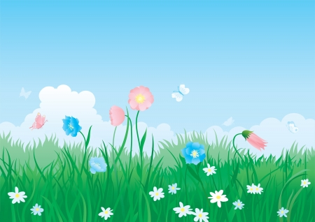 Blossom summer   illustration of summer landscape with butterflies, many flowers on green grass and blue sky with fluffy clouds Stock Vector - 17572358
