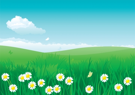 Flor de verano ilustración de paisaje de verano con muchas flores en la hierba verde y el cielo azul con nubes esponjosas