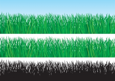 wildlife reserve: Green grass  Three banners for web design with green grass on blue background,  isolated and Silhouette