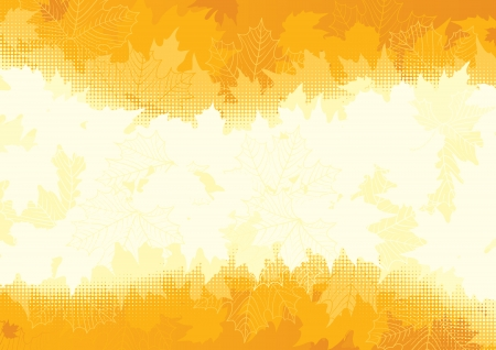 thanksgiving background: Autumn maple leaves  Vector background  with many orange and yellow maple leaves