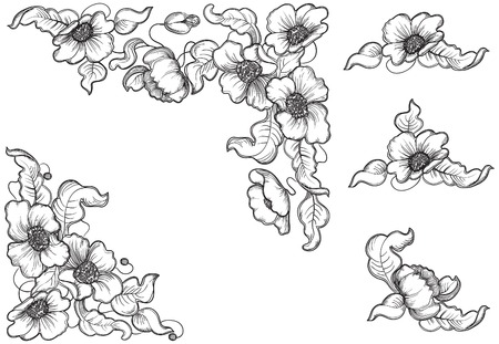 Flowers and leaves of the poppy  Vector set of floral elements for design at engraving style   Vector