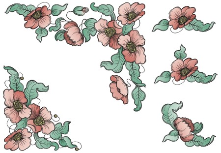 flowerses: Flowers and leaves of the poppy  Vector set of floral elements for design at color engraving style   Illustration