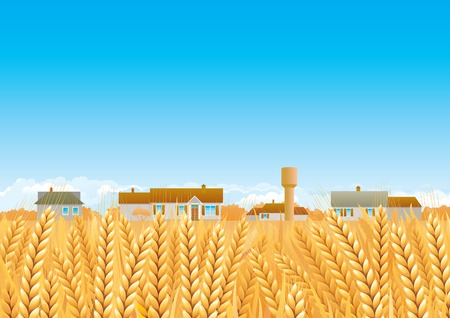 grain fields: Countryside  Fall landscape of yellow Grain fields with houses and Water Tower