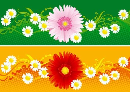 꽃이 만발한: Floral banners  Two vector  backgrounds with  blossoming flowers  일러스트