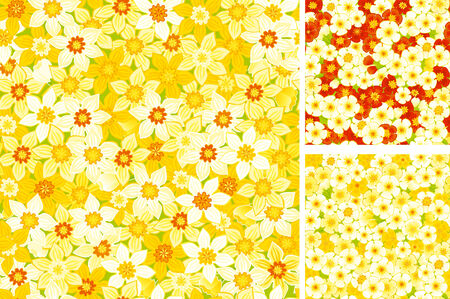 primulas: Floral seamless pattern  of spring primroses  Vector seamless backgrounds with white, yellow daffodils and red, yellow primulas