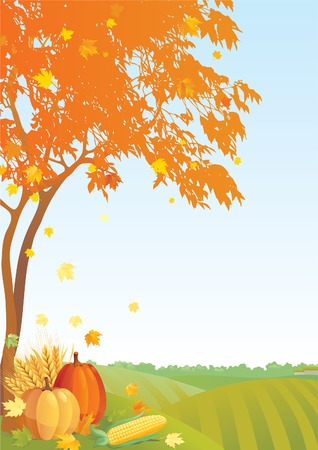 horizont: Thanksgiving background. Maple  tree, pumpkins, corns  and Cereal  on Autumn landscape Illustration