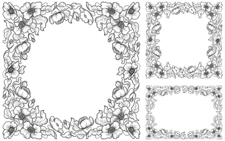 Set of poppy borders. Vector  floral backgrounds with poppy flowers and leaves  at  retro engraving style. Vector