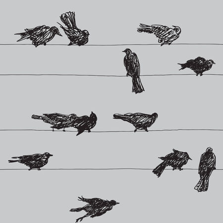 roost: Birds pattern. Vector seamless  background of birds Silhouettes on electrical wires