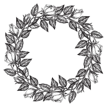 rose frame: Roses. Rose flower wreath. Vector floral circle border. Hand draw at retro style