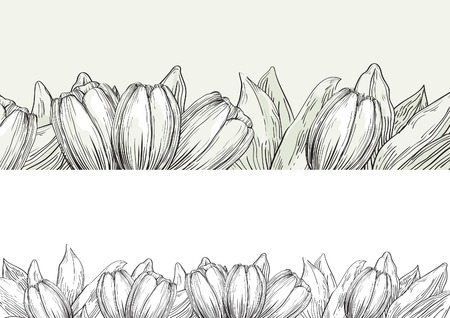 rn: Spring tulips. Vector banners  of  tulips with many leaves at black and white engraving style.