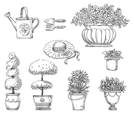Hand drawn Flowers in garden. Set of garden icons  at doodle style Illustration
