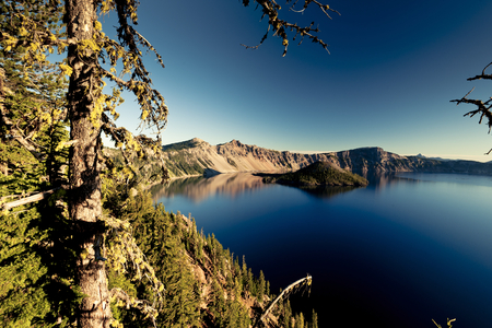 Crater Lake wide angle with tree photo