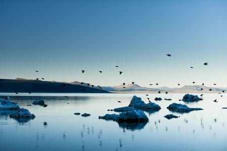 lee vining: Peaceful Mono Lake approaching nightfall. Stock Photo