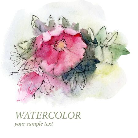 pink flower: Watercolor Rose branch.