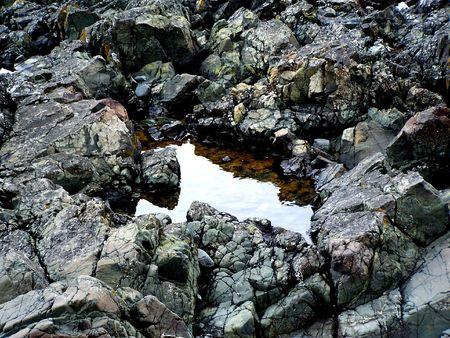 太平洋のカナダの海岸に沿ってギザギザの岩の間で小さな水たまり。 写真素材