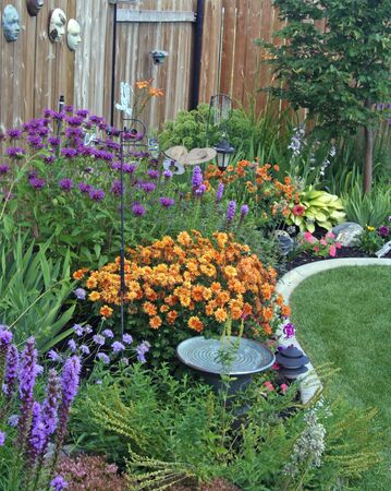 Backyard perennial border blooming with vibrant color! photo