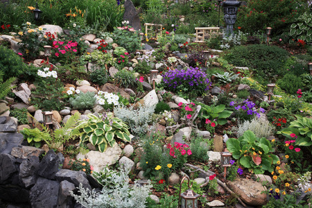 perennial: A beautiful perennial garden planted on a difficult slope.  Extreme gardening at its best!