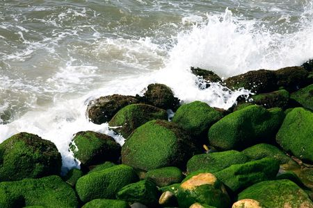 pounding: The pounding surf crashes against algae covered rocks. Pacific Ocean, Puerto Vallarta, Mexico.