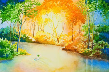 mallard: Un pato pato flotante en un r�o, iluminado por el sol poniente. Una original acuarela.