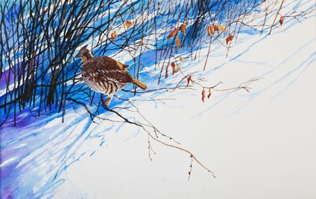 A prairie winter scene of a  prairie chicken hiding in the tall shadows cast by the shrubbery.  An original watercolor painting. Stock Photo - 4685593
