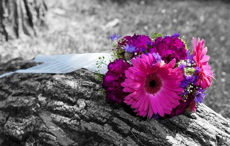A beautiful, bridal bouquet left sitting on a tree trunk.  Black and white image with color tinted flowers.