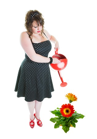 A successful gardener, dressed in pinup style, fertilizing a healthy, enormous gerbera daisy!  Shot on white background.