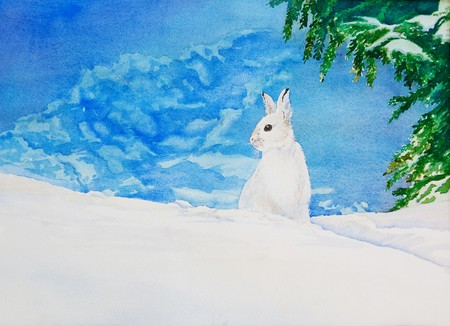 An original watercolor painting of a white rabbit in a snowy, winter landscape. photo