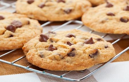 chip: Cookies de chip de caf�, chocolate caliente, oro de refrigeraci�n en un rack.  Profundidad superficial de campo.