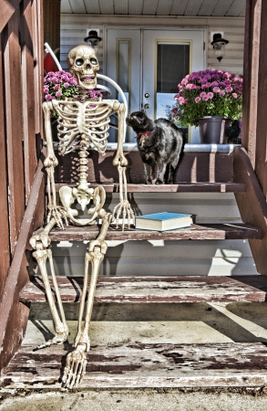A skeleton sitting on the backsteps enjoying the morning sun with a good book and pet black cat. Zdjęcie Seryjne