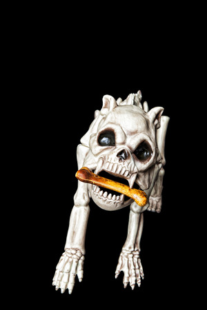 A skeleton dog with bone.  Black background.