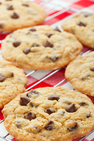chocolate treats: Warm, golden brown, chocolate chip cookies cooling on a rack. Shallow depth of field.
