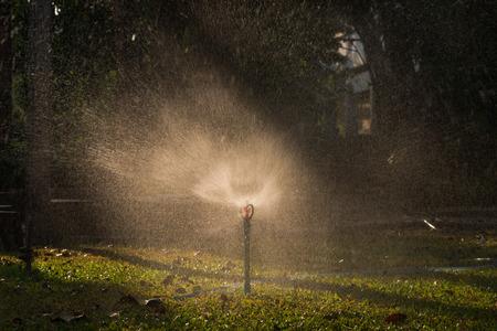 sprinkle system: A water sprinkler in a garden