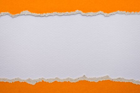 teared paper: Teared, ripped orange paper on white background