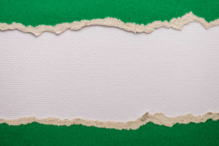 teared paper: Teared, ripped green paper on white background Stock Photo