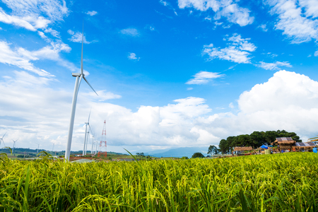 power generation wind turbine on green rice field against blue sky background, used for green earth concept Stock Photo