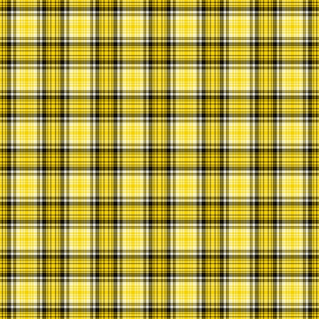 黒、黄色、& 白の格子縞 写真素材