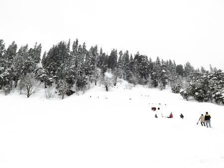 Mening van Solang Snowpoint in Manali, Himachal Pradesh, India. Sneeuw stroomt over de dennenbosberg, alles werd wit Stockfoto