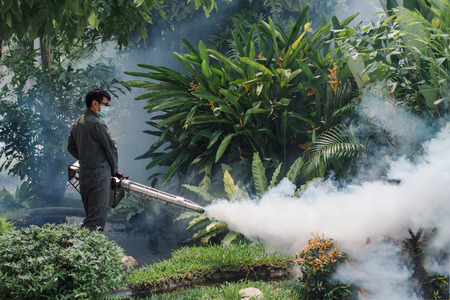 The man's fogging to eliminate mosquito for preventing spread dengue fever and zika virus in city